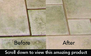 tile brite, enzyme cleaner and deodorizer, floors and walls, money back guarantee, potpourri scent.